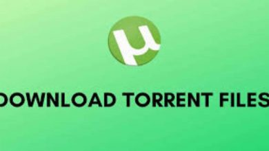 Photo of Is Torrent Safe?