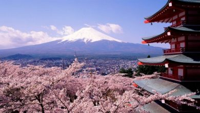 Photo of Everything You Need to Know About Moving to the USA from Japan
