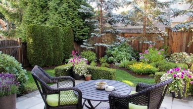 Photo of 10 Ways to Make Your Backyard More Private