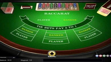 Photo of The Services You can get from an Online Casino & Baccarat Site