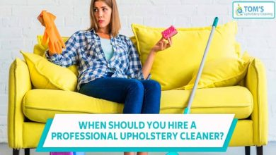 Photo of Why should we hire a sofa and upholstery cleaning service?