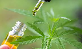 Photo of CBD Oil- Natural Medicine for Modern Disease