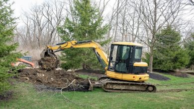 Photo of Tips To Remove Stubborn Tree Stump From Your Yard