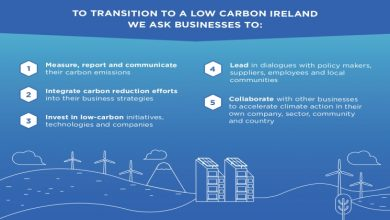 Photo of How businesses can contribute to reducing CO2 emissions