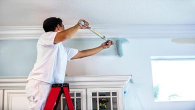 Photo of What makes a good house painter?