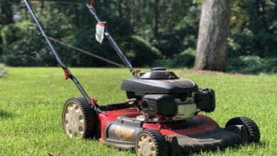 Photo of The Application of Honda Lawn mowers in Kenya