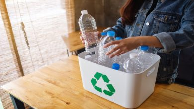 Photo of 9 Best Practices In Reducing Household Waste