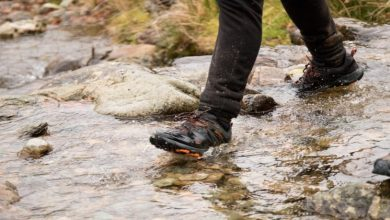 Photo of Beginner's Guide to Choosing the Right Footwear for Outdoor Recreation Activities