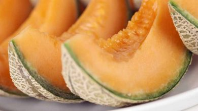 Photo of Cantaloupe: Can Your Dogs Eat It, How Much & How To Feed It To Them?