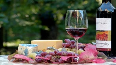 Photo of Pairing Wine with Food – Read More from Underground Cellar