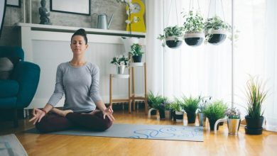 Photo of Plants That Can Help you Meditate and Find Inner Peace