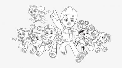Photo of 7 Creative Gift Ideas for Fans of Paw Patrol