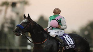 Photo of How Do Jockeys Choose Their Silk Colours .