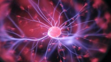 Photo of Positive Effects of Increased Parasympathetic Stimulation