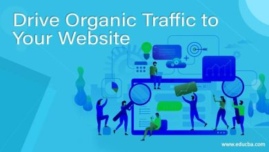 Photo of What Are Organic Seo Services That Help To Grow Traffic