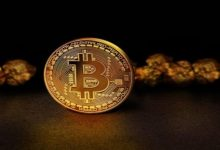 Photo of Which Services Bitcoin Ira Companies Provide